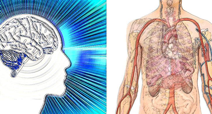 Ein bisschen Biofeedback – ein bisschen Neurofeedback